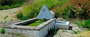 Fuente de San Carlos